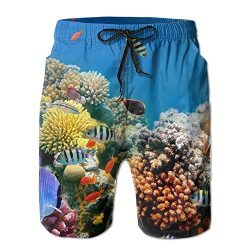 Tydo Tropical Fish Coral Reef Underwater Men's Beach Shorts Quick Dry Summer Swim Trunks S ...